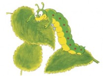 caterpillar-eating-300x221
