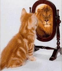 Mirror Confidence